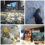 PhotoGrid_1516843279176